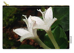 Partridge Berry  Carry-all Pouch by William Tanneberger