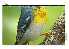 Parula Song Carry-all Pouch by David Beebe