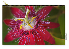Carry-all Pouch featuring the photograph Passion Flower by Jane Luxton