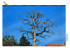 Carry-all Pouch featuring the photograph Past Prime by Greg Norrell