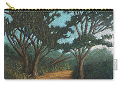 Path By Lake Murray 01 Carry-all Pouch