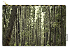 Path In The Woods Carry-all Pouch
