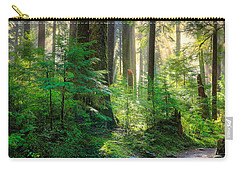Pathway Into The Light Carry-all Pouch