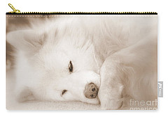 Pawsome Carry-all Pouch by Fiona Kennard