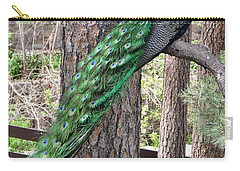 Carry-all Pouch featuring the photograph Peacock Watches The World by Diane Alexander