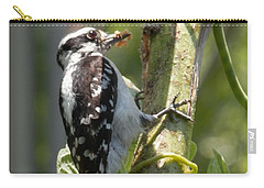 Carry-all Pouch featuring the photograph Peanut Butter Loving Red Caucated Woodpecker by Belinda Lee