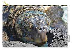 Peek-a-boo Turtle Carry-all Pouch by Amanda Eberly-Kudamik