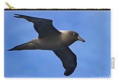 Pelagic Seabird... Carry-all Pouch by Nina Stavlund