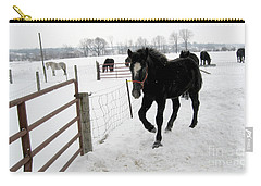 Percheron Horse Colt In Snow Carry-all Pouch