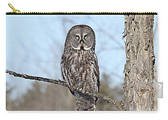 Perching Perfect Carry-all Pouch by Heather King