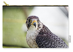Carry-all Pouch featuring the photograph Peregrine Falcon Bird Of Prey by Eleanor Abramson