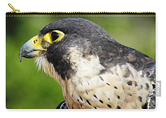 Carry-all Pouch featuring the photograph Peregrine Falcon by Cynthia Guinn