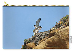 Peregrine Falcons - 3 Carry-all Pouch