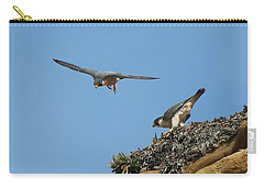 Peregrine Falcons - 6  Carry-all Pouch