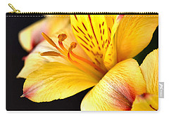 Peruvian Lily Carry-all Pouch by Deb Halloran