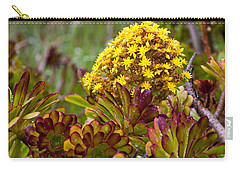 Petal Dome Carry-all Pouch by Melinda Ledsome