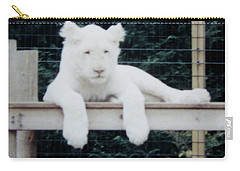 Carry-all Pouch featuring the photograph Philadelphia Zoo White Lion by Donna Brown