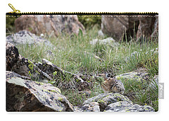 Carry-all Pouch featuring the photograph Pika  by Michael Chatt