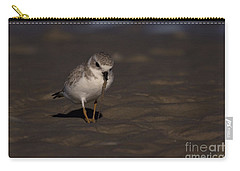 Piping Plover Photo Carry-all Pouch by Meg Rousher