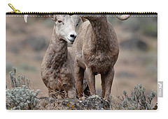 Playfull Rams Carry-all Pouch by Athena Mckinzie