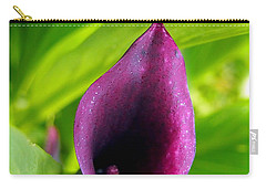 Plum Purple Calla Lilly Flower In The Garden Carry-all Pouch