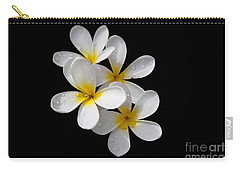 Carry-all Pouch featuring the photograph Plumerias Isolated On Black Background by David Millenheft