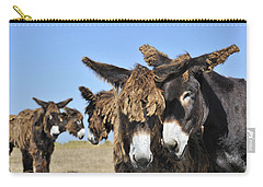 Carry-all Pouch featuring the photograph Poitou Donkey 3 by Arterra Picture Library