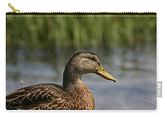Carry-all Pouch featuring the photograph Pondering A Swim by Denyse Duhaime