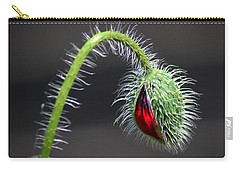 Poppy Red Lamp Carry-all Pouch