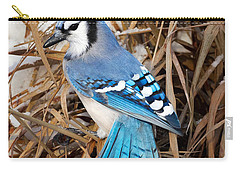 Portrait Of A Blue Jay Carry-all Pouch by Bill Wakeley