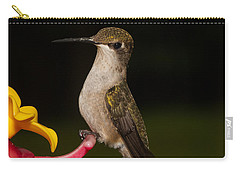 Portrait Of A Hummingbird Carry-all Pouch