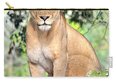 Portrait Of A Proud Lioness Carry-all Pouch
