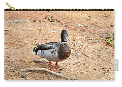 Carry-all Pouch featuring the photograph Portrait Of An Alabama Duck 2 by Verana Stark