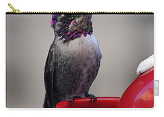 Carry-all Pouch featuring the photograph Posing Juvenile Hummingbird Anna by Jay Milo