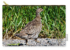 Carry-all Pouch featuring the photograph Prairie Chicken Run by Janice Rae Pariza
