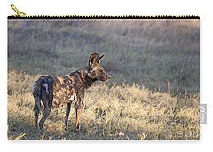Carry-all Pouch featuring the photograph Pregnant African Wild Dog by Liz Leyden