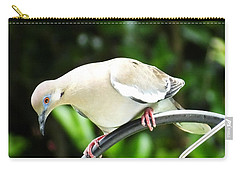 Pretty Bird Carry-all Pouch by Lizi Beard-Ward