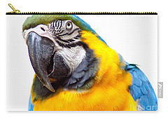 Carry-all Pouch featuring the photograph Pretty Bird by Roselynne Broussard