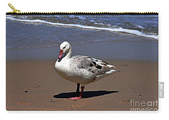 Carry-all Pouch featuring the photograph Pretty Goose Posing On Monterey Beach by Susan Wiedmann