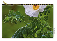 Prickly Poppy Carry-all Pouch