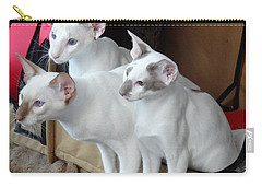 Prize Winning Triplets Carry-all Pouch