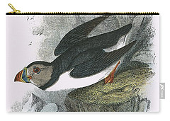 Puffin Carry-all Pouch by English School