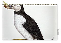 Puffin, Marmon Fratercula, Circa 1840 Carry-all Pouch by French School