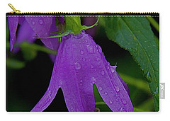 Purple Carry-all Pouch by Daniel Sheldon