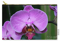 Purple Phalaenopsis Orchids Carry-all Pouch