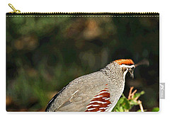 Quail Carry-all Pouch