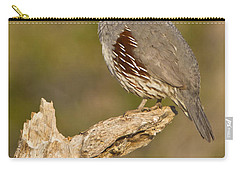 Carry-all Pouch featuring the photograph Quail On A Stick by Bryan Keil