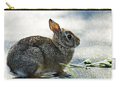 Carry-all Pouch featuring the photograph Rabbit by Yulia Kazansky