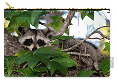 Raccoon Eyes Carry-all Pouch