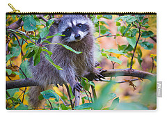 Raccoon Carry-all Pouch by Inge Johnsson